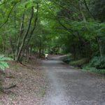oohara002