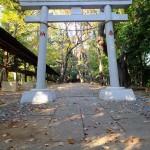 yamata0002