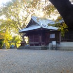 yamata0006